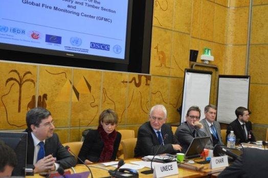 UNECE-Geneva-Fire-Forum-2013-Photos-30