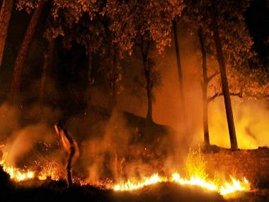 Uttarakhand fire. PTI