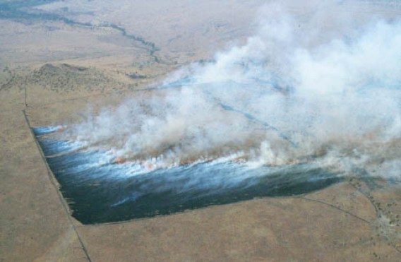 Aerial view of a AFARI-97 experimental burning plot at Lewa Downs