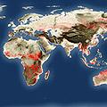 World's hot spots