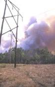https://i0.wp.com/gfmc.online/wp-content/uploads/wildfire_260_a.jpg?resize=110%2C172&ssl=1 (8447 Byte)