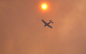 https://i0.wp.com/gfmc.online/wp-content/uploads/wildfire_268_a.jpg?resize=174%2C110&ssl=1 (6614 Byte)