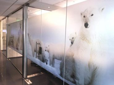 Full color Etched glass vinyl in South Windsor, CT