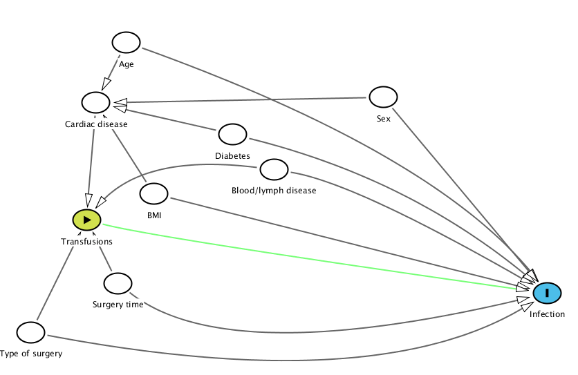 Drawing a directed acyclic graph (DAG) for blood