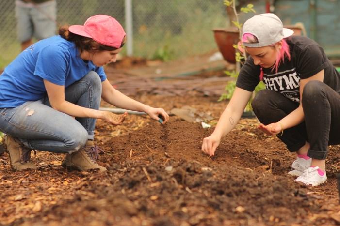 Megan and Grace planting carrots