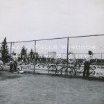 Grand Falls Townsite Swimming Pool July 1956