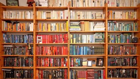 Bokhylle sortert etter farger (Foto: Roy Andersen)