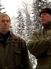 Ordførere i Østfold mener ulvegrensa er nådd (Foto: Kathrine Brønn/NRK)