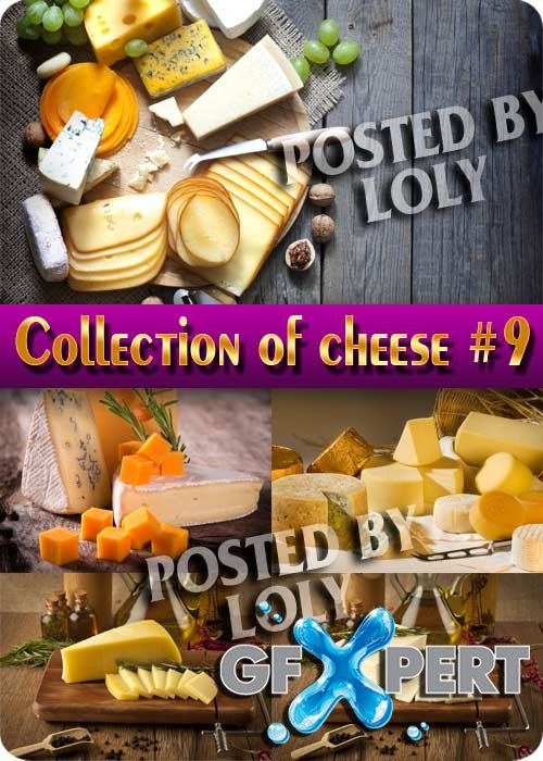Food. Mega Collection. Cheese #9 - Stock Photo
