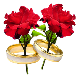 Image result for 2 two red roses