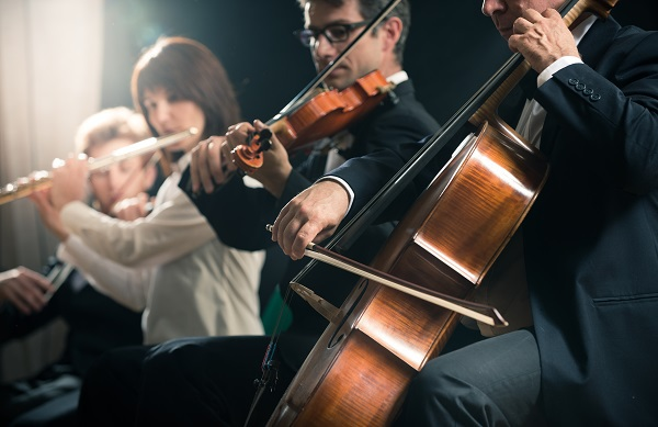 Professional Musicians and Hearing Loss