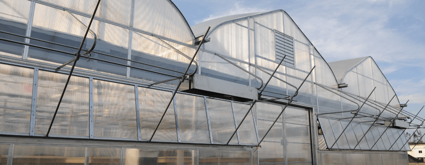 Best Practices for Commercial Greenhouse Construction
