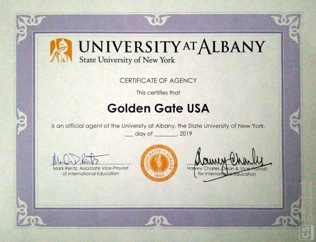 University at Albany NYC