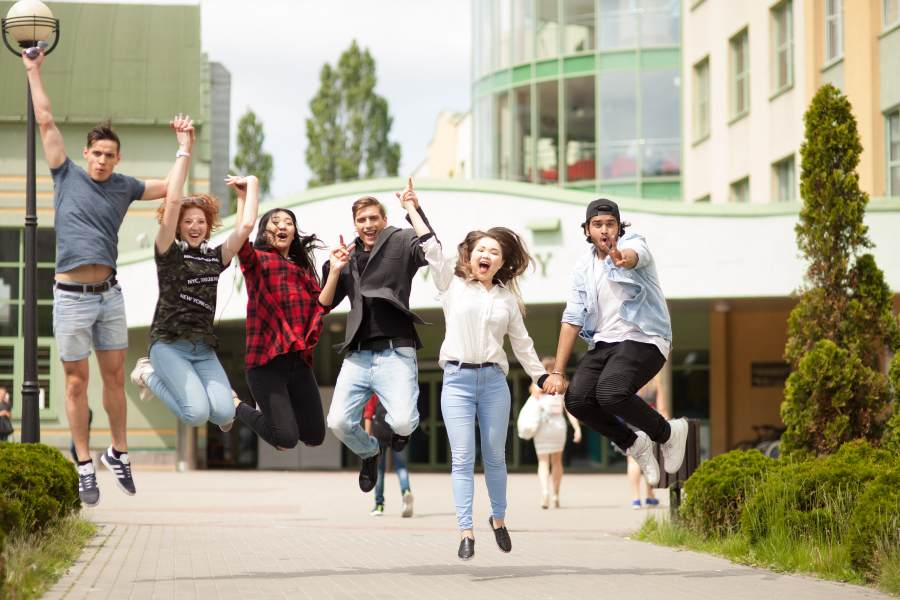Vistula Group University in poland