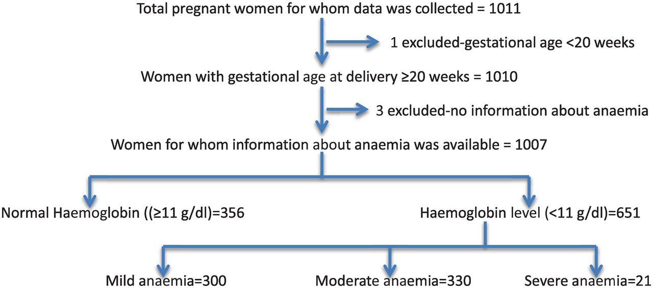 Download figure also association between maternal anaemia and pregnancy outcomes  rh ghj
