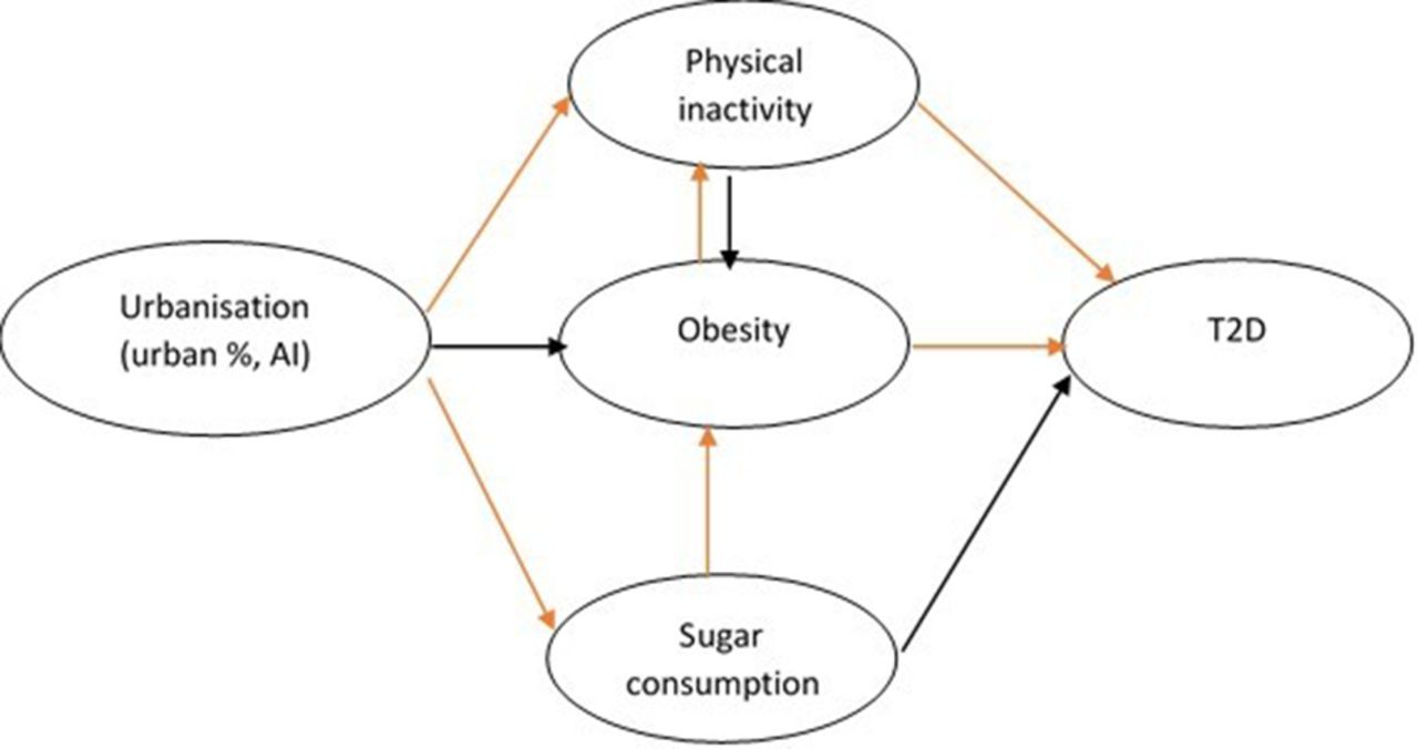 Association between urbanisation and type 2 diabetes: an