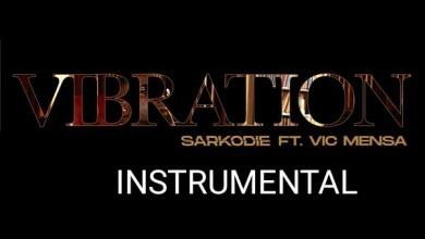 Sarkodie ft. Vic Mensa - Vibration Instrumental