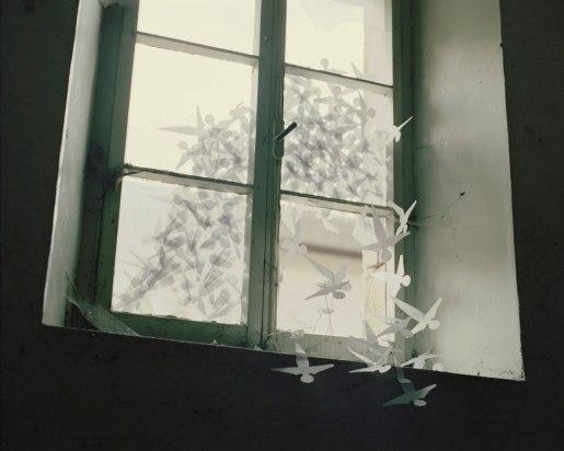 Sadako, 2009 - ©David Favrod