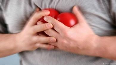 صورة علميا: قلب الإنسان يمتلك حاسة الشّم