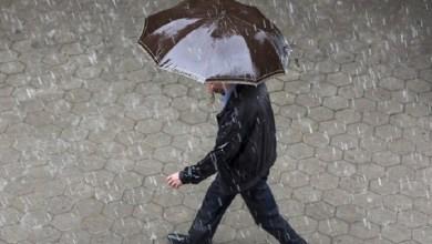 """صورة نشرة خاصة.. أمطار رعدية و""""تبروري"""""""