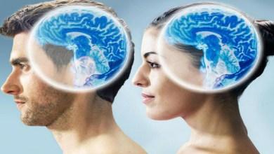صورة مقارنة بين دماغ المرأة والرجل
