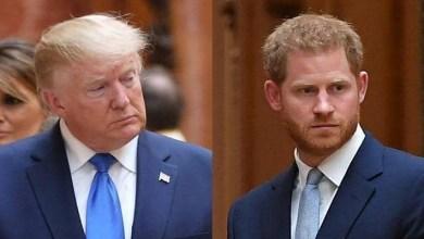 صورة بعدما رفض ترامب التكلف بحمايته بأمريكا.. الأمير هاري يرد بقوة