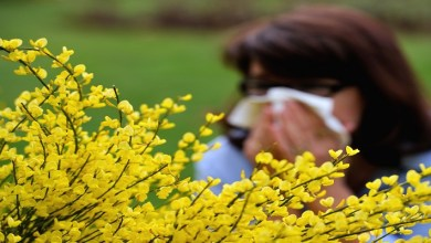 صورة ما الفرق بين أعراض حساسية الربيع وأعراض فيروس كورونا؟