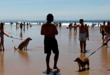 صورة هل سيتم فتح الشواطئ في فصل الصيف بالمغرب؟
