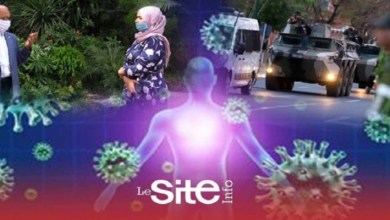 صورة خبير في علم الفيروسات يكشف أسرار فيروس كورونا وطرق الوقاية والتعايش معه – فيديو