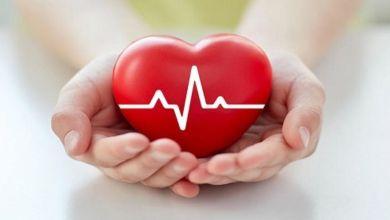 صورة 7 خطوات تساعدك فى الحفاظ على صحة وسلامة القلب