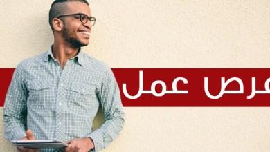 صورة خبر سار للشباب.. وزارة الشغل تطلق حملة توظيف واسعة