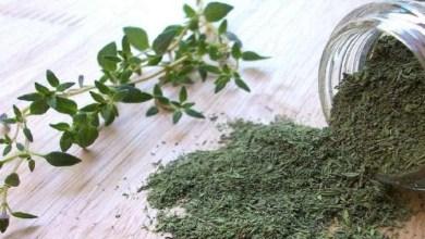 صورة ما هي فوائد شرب الأعشاب الطبيعية للشعر؟