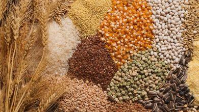 صورة تعرف على أفضل 5 أنواع من الحبوب الكاملة لصحة الأمعاء