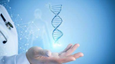 صورة 4 طرق لتقليل خطر إصابتك بالأمراض الوراثية