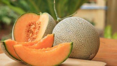 صورة الشمام فاكهة صيفية بامتياز.. إليكم 4 من فوائده الرائعة