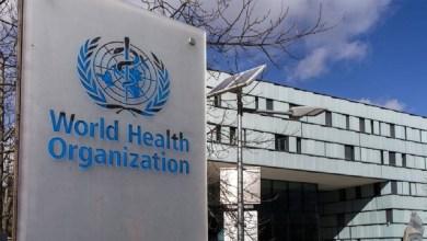 صورة دولة إفريقية تُسجل أول إصابة بفيروس جديد ومميت والصحة العالمية تكشف التفاصيل