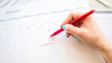 صورة ما الذي يجب أن تعرفيه عن الافرازات خلال فترة التبويض؟