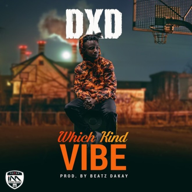 DXD Which Kind Vibe cover artwork