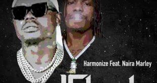 Harmonize – Ushamba Remix Ft Naira Marley