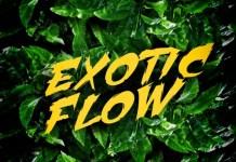 Omar Sterling - Exotic Flow (Prod. by Killmatic) (GhanaNdwom.com)