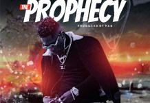 Shatta Wale - The Prophecy (Prod by Paq)