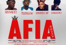 Ssnowbeatz, TeePhlow, Quamina MP, Jaredo - Afia Schwarznegger (Remix)