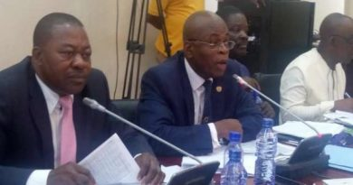 Stop Sister City Programmes, it's not Beneficial – Ranking Member on PAC