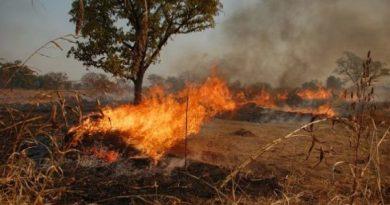 John Dima: Ghana's 2019 best farmer loses 31-acre farmland to bush fire