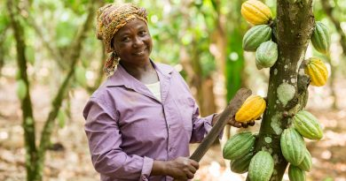 Asunafo North Farmers Union awarded Small Producer Organisation of the Year by Fairtrade International