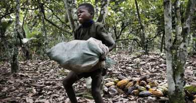 AASU calls for action to end surge in child labour as WHO predicts 66m children falling into extreme poverty