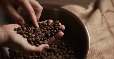 'Neglect' of coffee industry results in exports revenue decline from $1.4 billion to $34,000