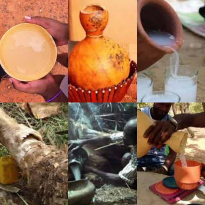 Palm Wine Is A Traditional Drink, Healthcare Experts Outline Its Benefits To Human Beings, What Are Those Hidden Facts?