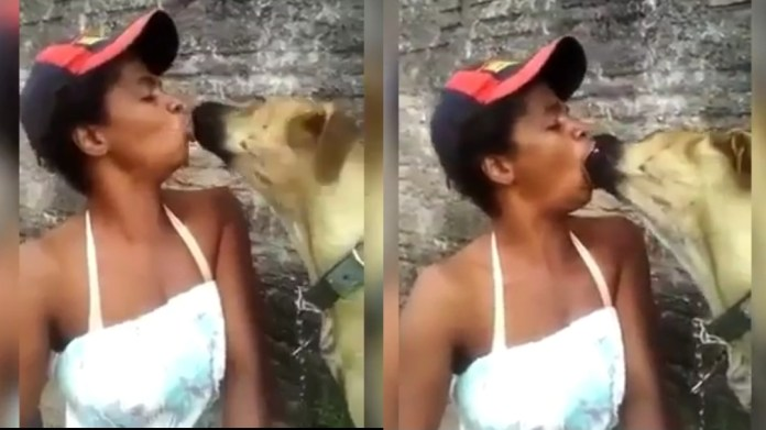 A Dog Spotted In Mouth To Mouth Scene With A Young Lady