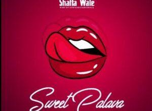 Photo of Shatta Wale – Sweet Palava (Prod. By Beatz Vampire)